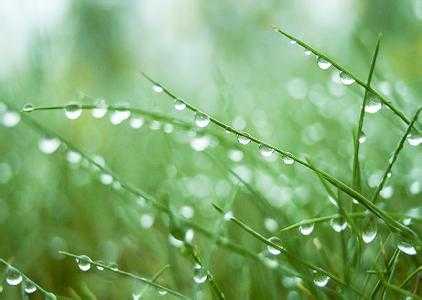 节气养生丨白露已生,养生别忘保暖、润燥