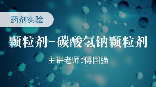 药剂实验 颗粒剂-碳酸氢钠颗粒剂